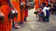 De magnifiques journées au Laos