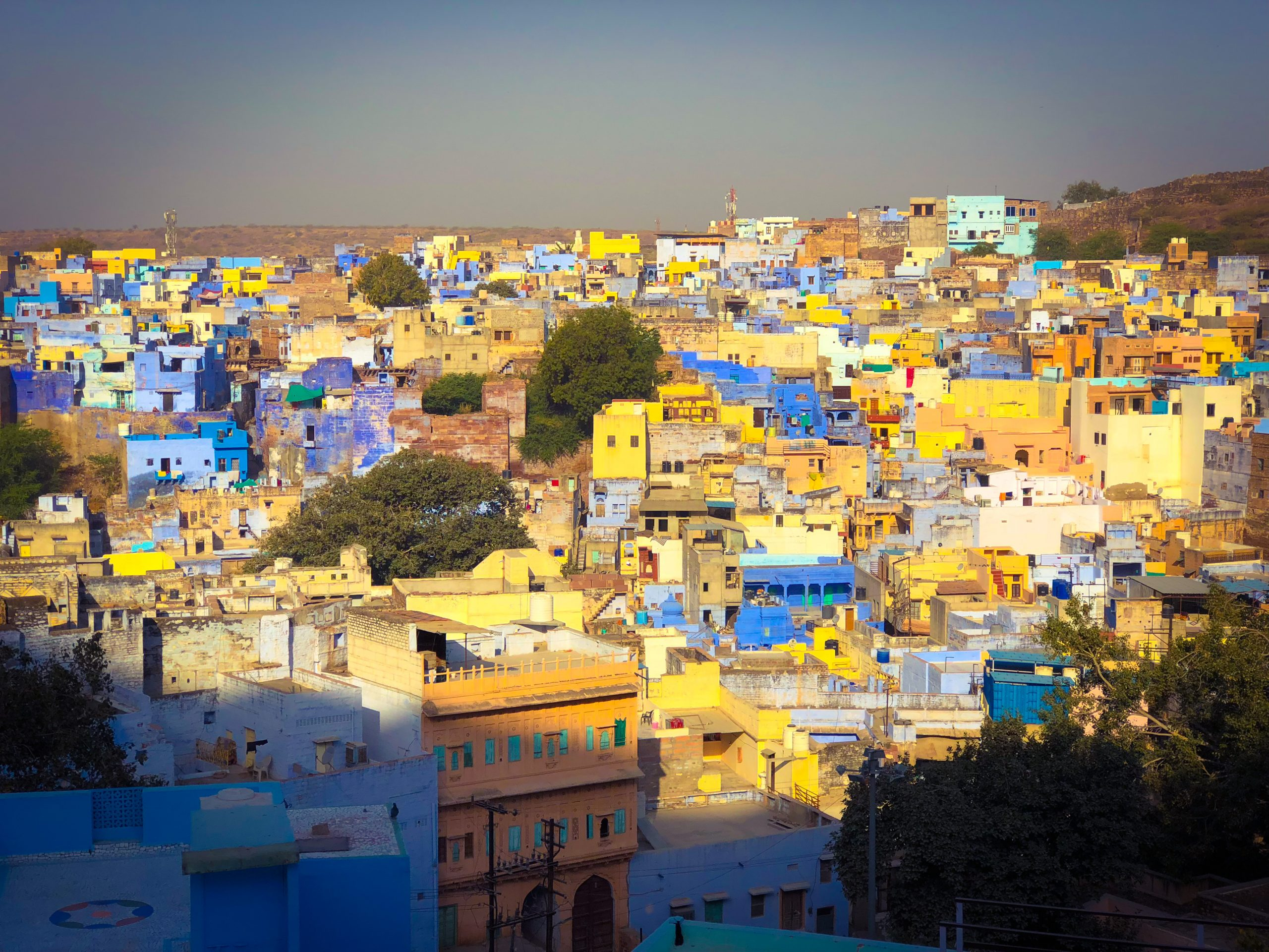 Jodhpur : la ville bleue de l'Inde