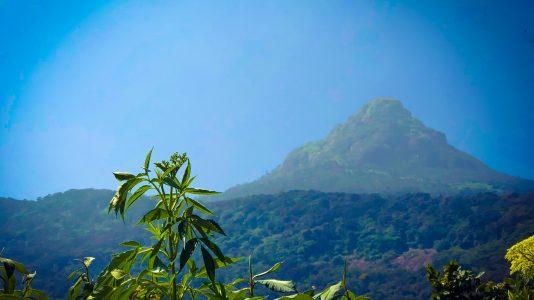 La montagne du Pic d'Adam au Sri Lanka