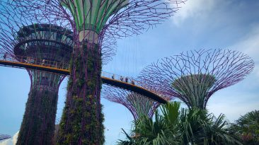 Singapour : la ville futuriste